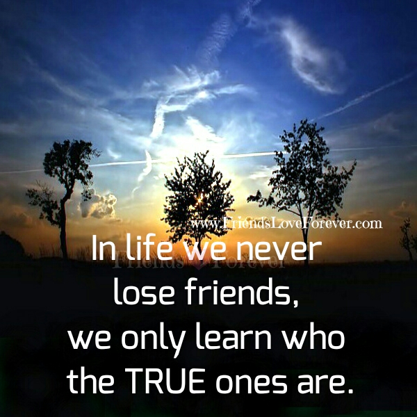 We never lose Friends in Life